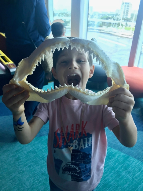 Princess Cruises - Discovery at SEA - Shark Week
